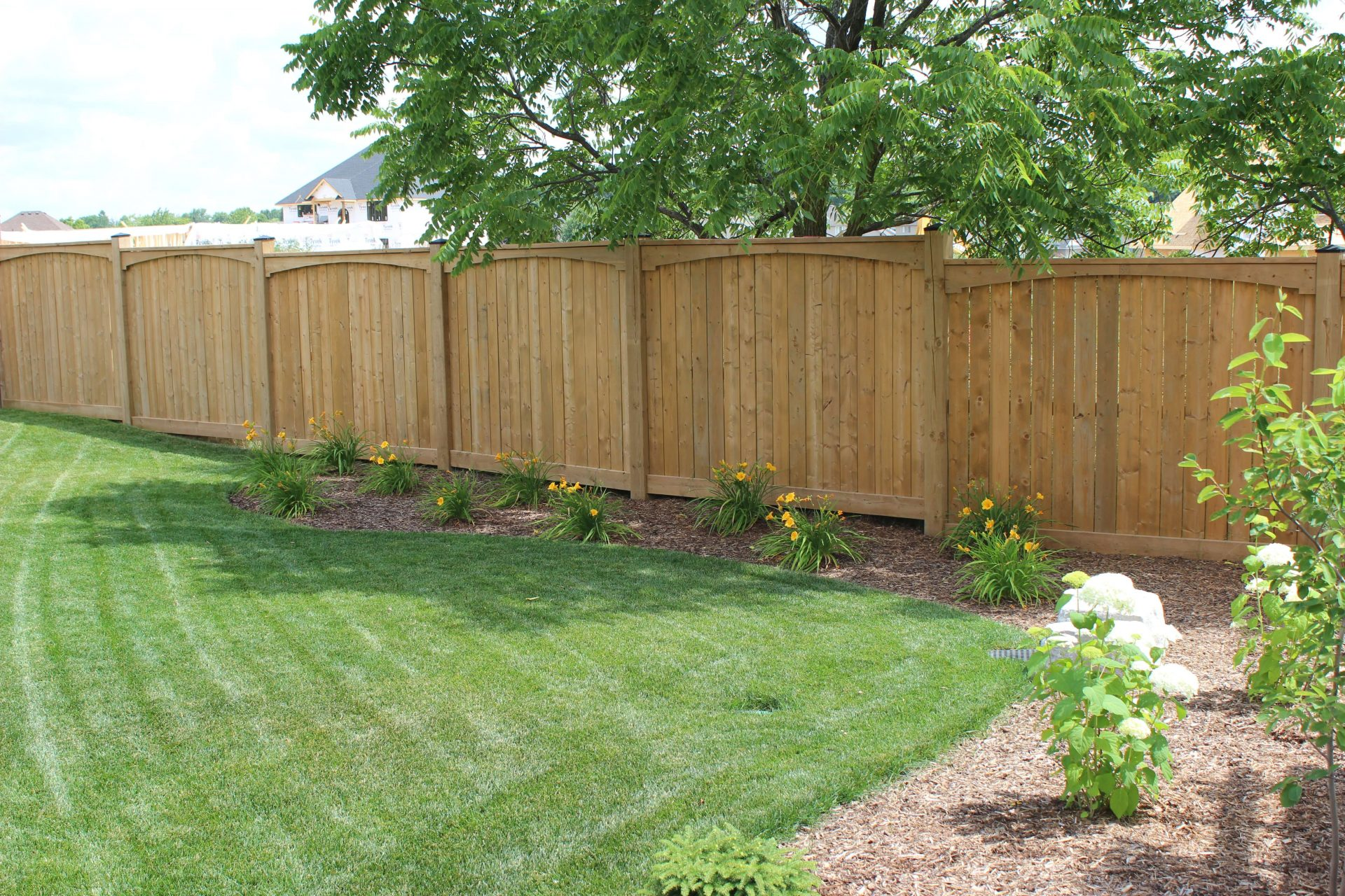 Wooden fence lining backyard