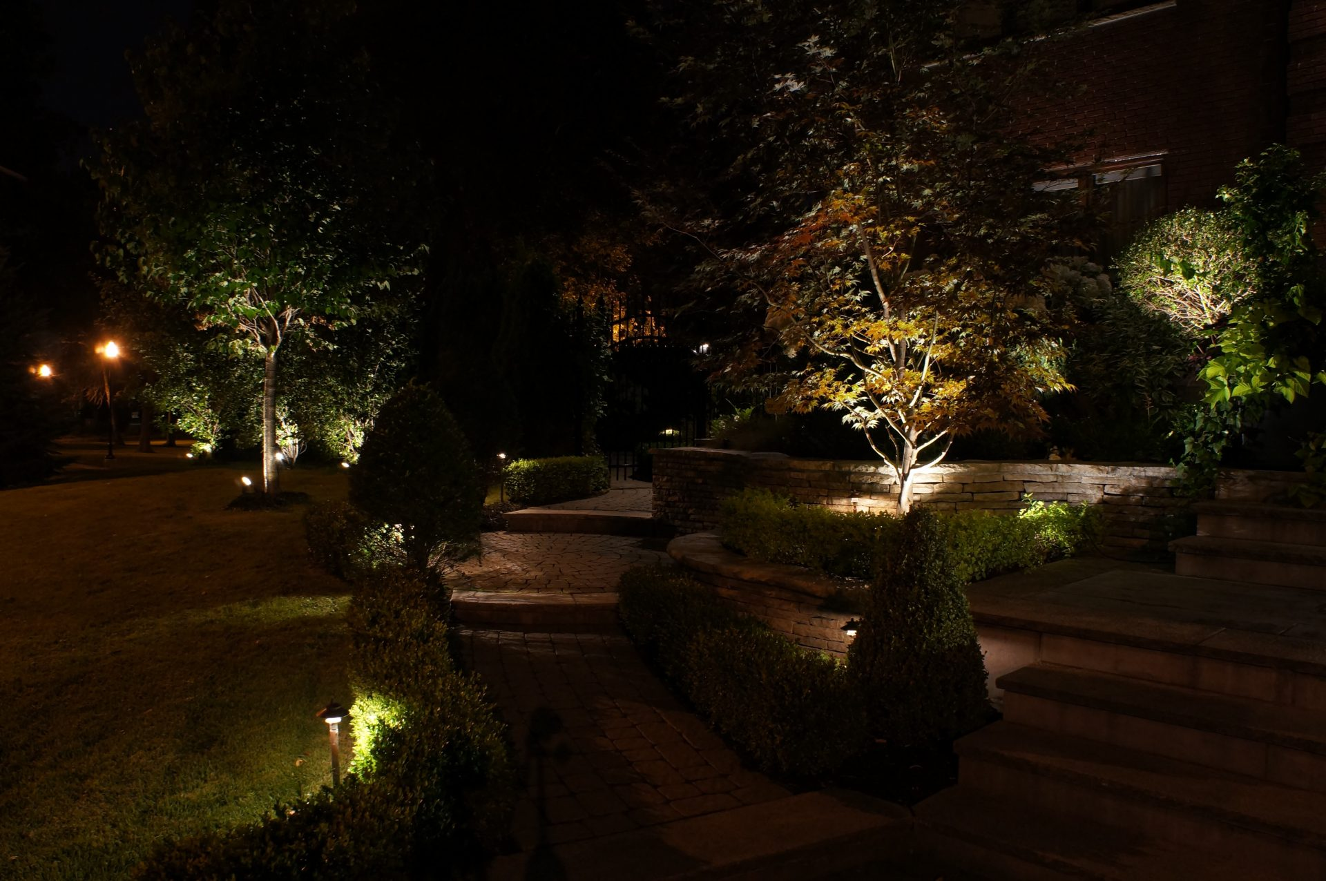 Evening pathway lit by small floodlights in garden
