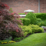 Benefits of condo landscaping from TLC Landscaping London