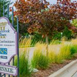 Questions for your condo landscaper from TLC Landscaping London